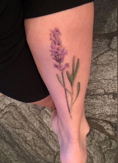 Lavender Tattoos On Calf