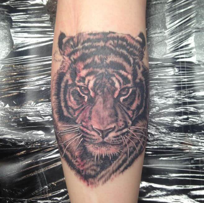 Tiger Calf Tattoos
