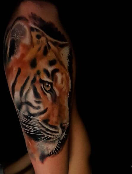 Tiger Tattoo On Arm 14