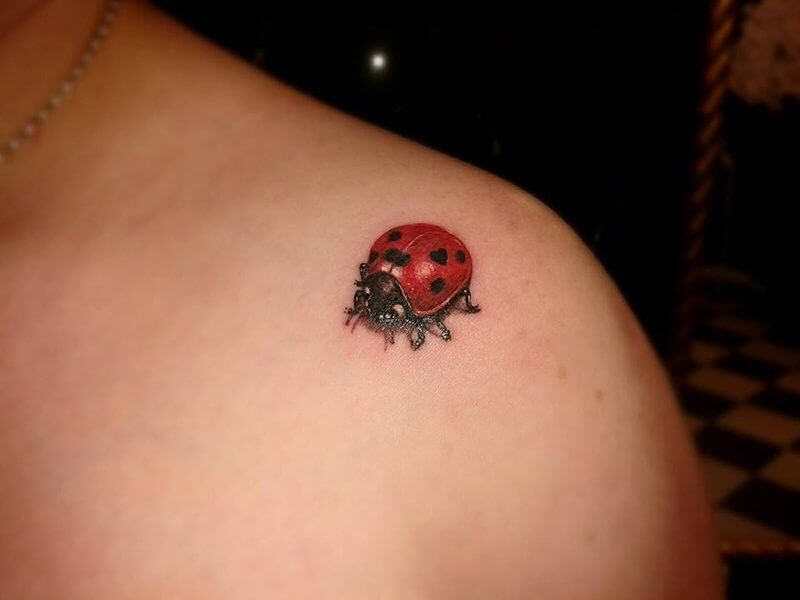 3d Ladybug Tattoos