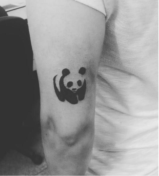 Panda Tattoos Photos Gallery