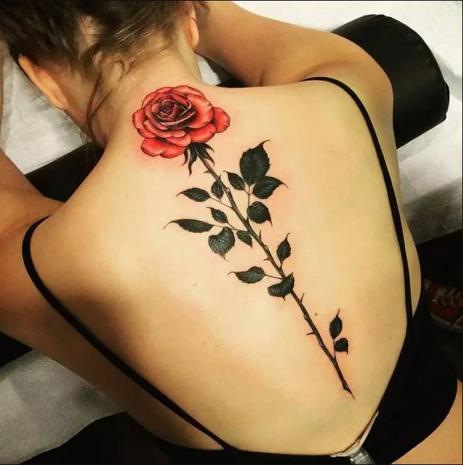 Red Rose Spine Tattoos Design For Girls