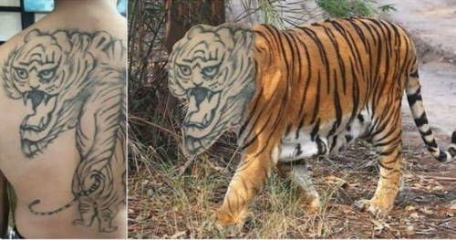 Bad Tattoo Gone Wrong (5)