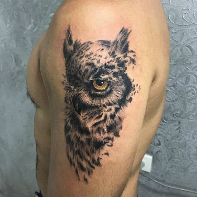 Half Sleeve Owl Tattoos
