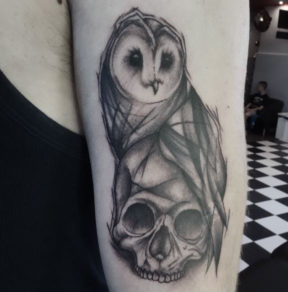 Owl And Skull Sketch Style Tattoos