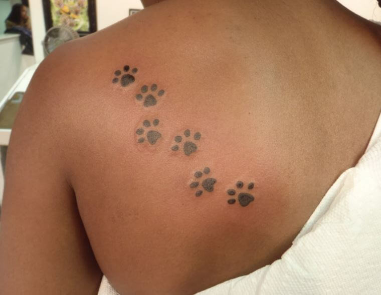 Paw Print Tattoo Shoulder Blade
