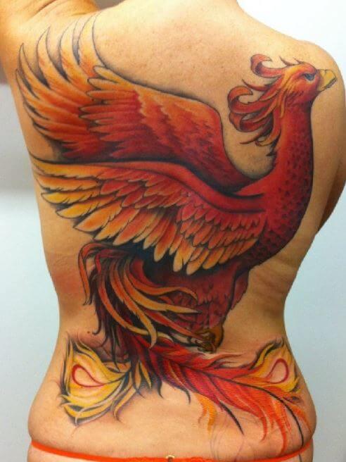 Phoenix Tattoos Upper Arm