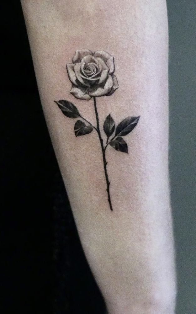 Rose And Thorns Tattoos (4)