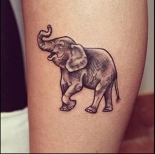 Elephant Tattoos On Calf