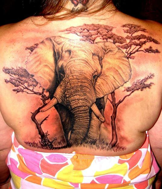Realistic 3D Elephant Tattoos Design And Ideas For Women