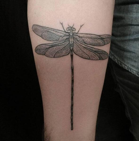 Dragonfly Tribal Tattoos