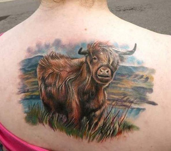 Highland Cow Wildlife Tattoos