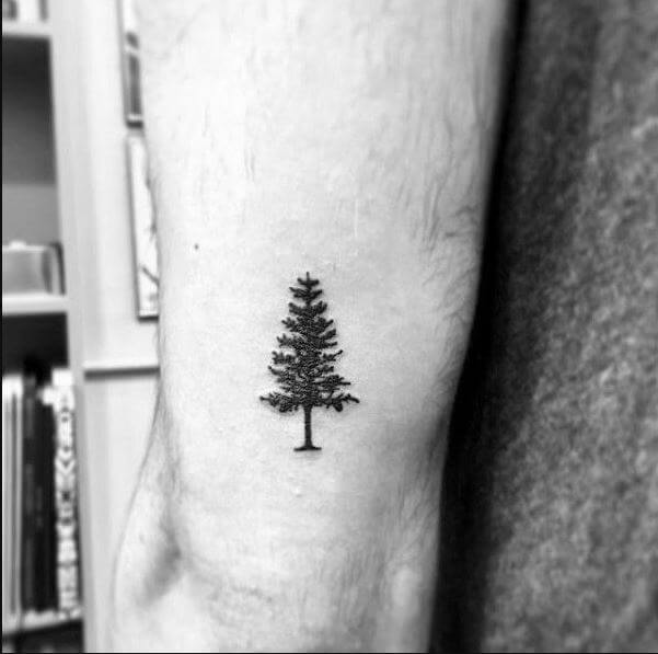 Awesome Small Tree Tattoos For Men