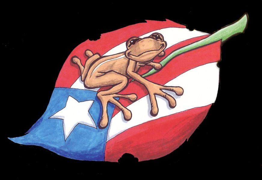 Dominican Taino Symbols And Meanings (27)