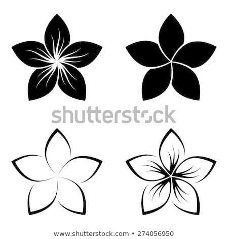 Traditional Hawaiian Tattoo Meanings (8)