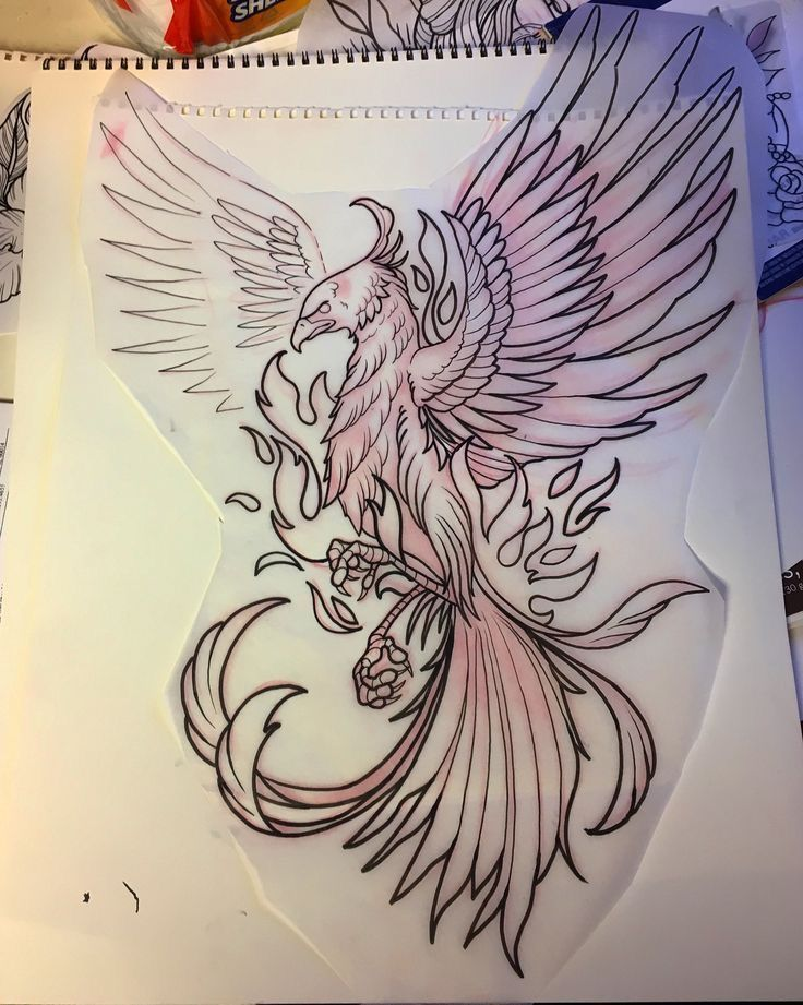 Fenix Tatuaje Masculina Feminina (116)