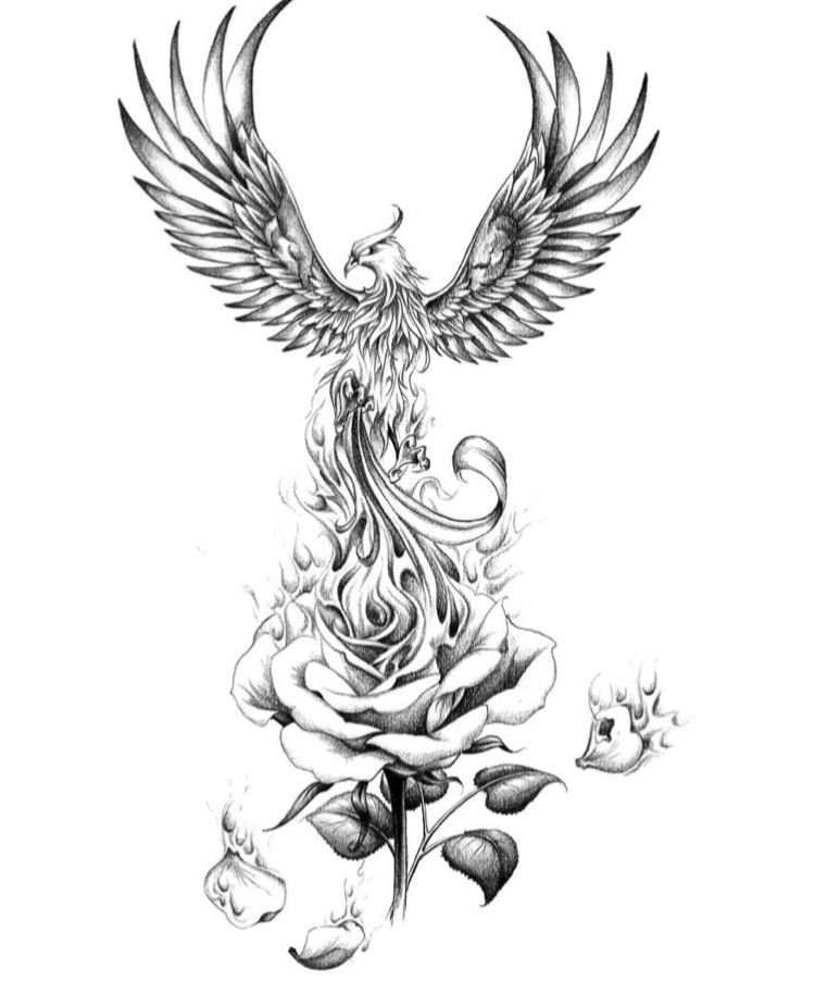 Fenix Tatuaje Masculina Feminina (127)