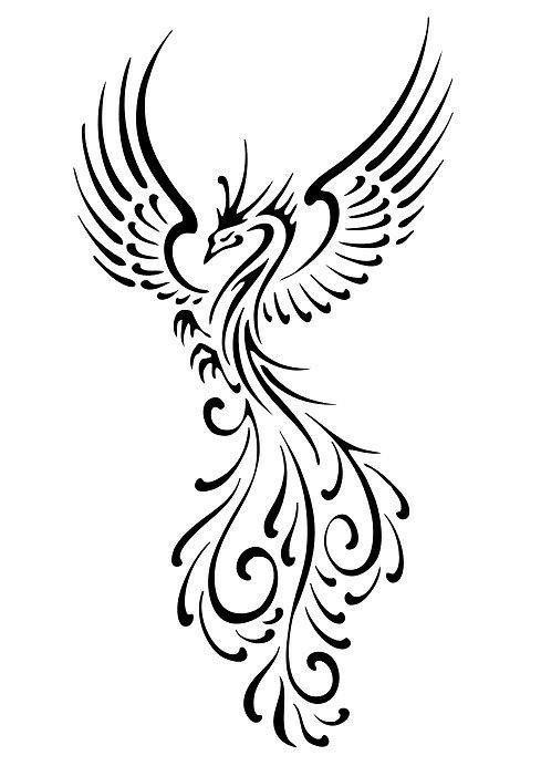 Fenix Tatuaje Masculina Feminina (176)