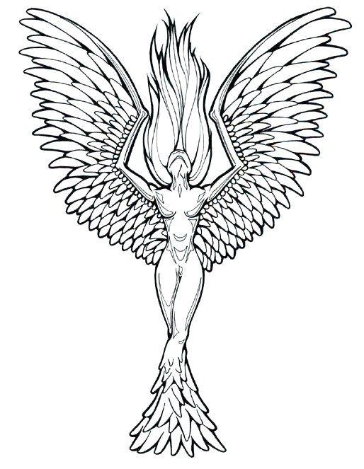 Fenix Tatuaje Masculina Feminina (192)