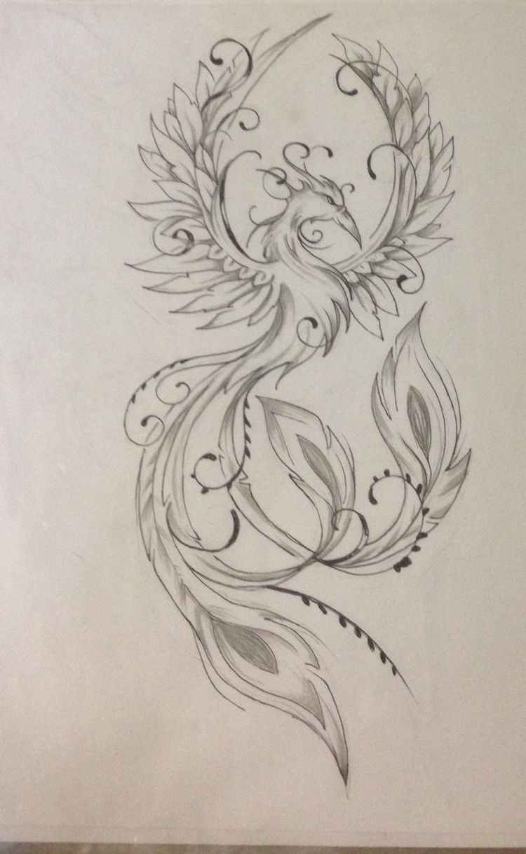Fenix Tatuaje Masculina Feminina (204)