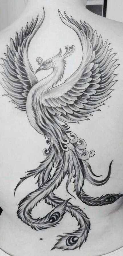 Fenix Tatuaje Masculina Feminina (78)