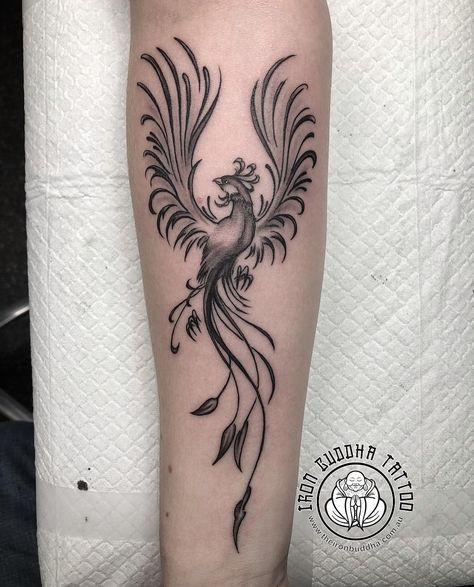 Fenix Tatuaje Masculina Feminina (82)