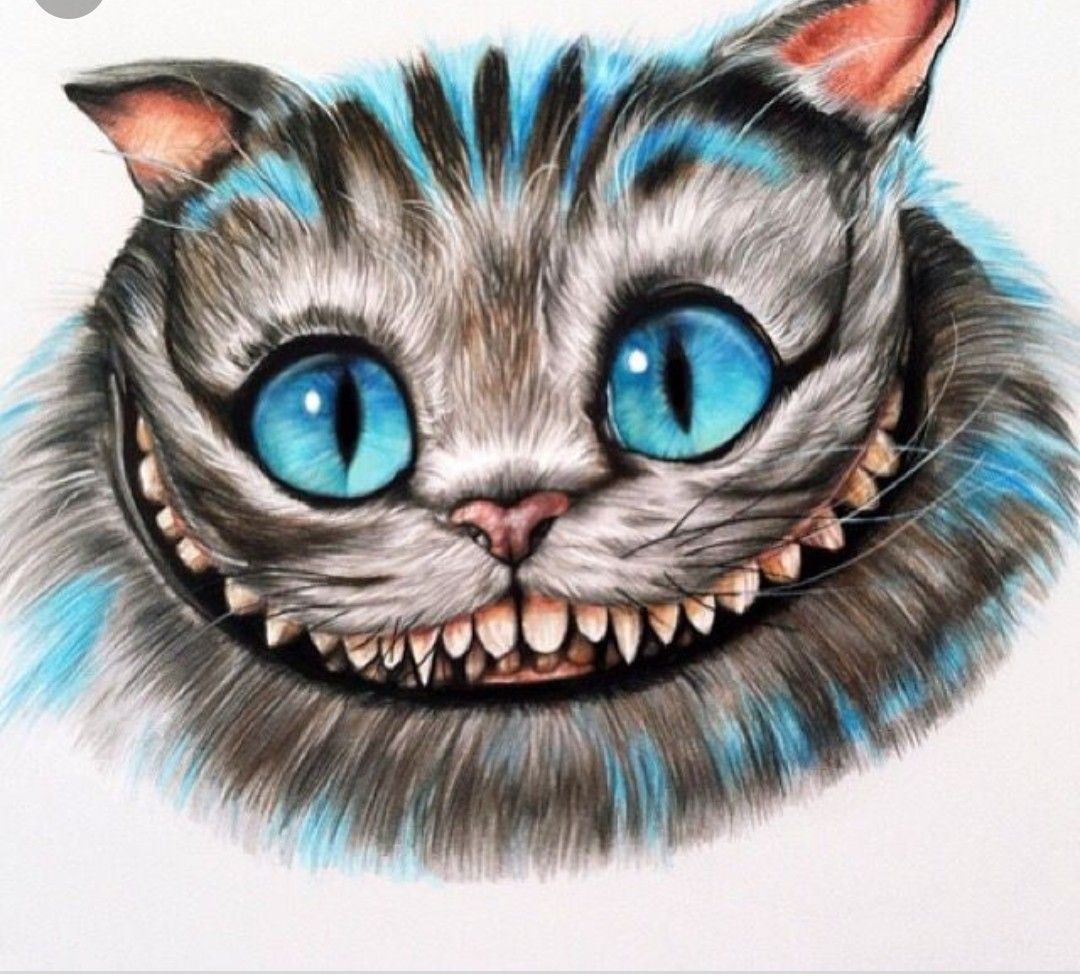 Cheshire Cat Tattoo Ideas Pictures (158)