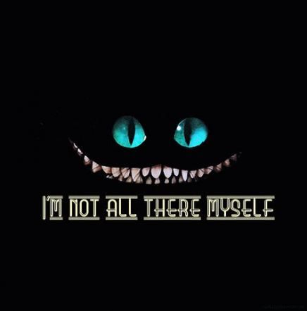 Cheshire Cat Tattoo Ideas Pictures (65)