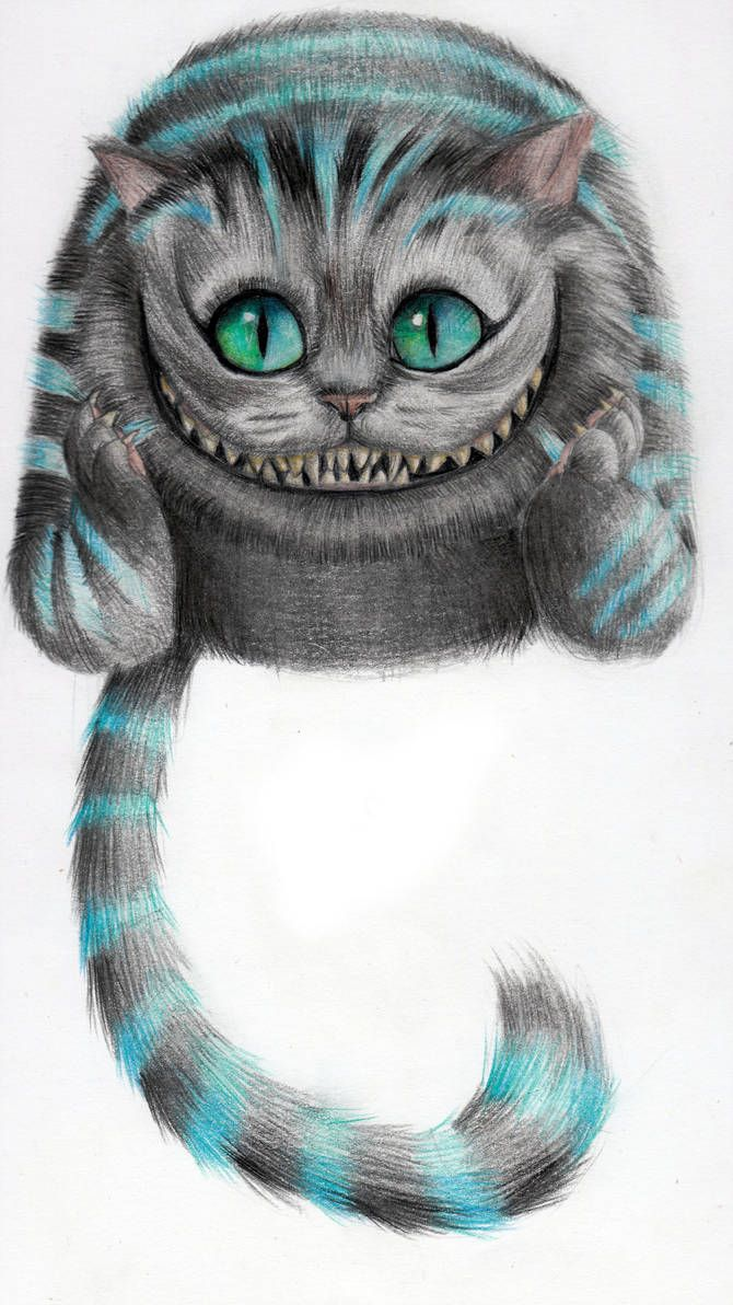 Cheshire Cat Tattoo Ideas Pictures (82)