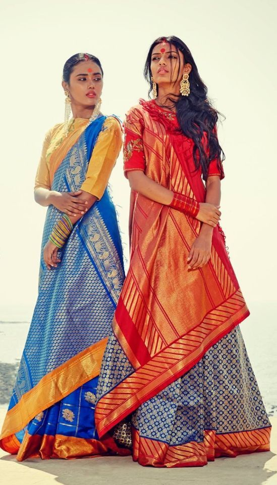 Different Saree Wearing Style (166)