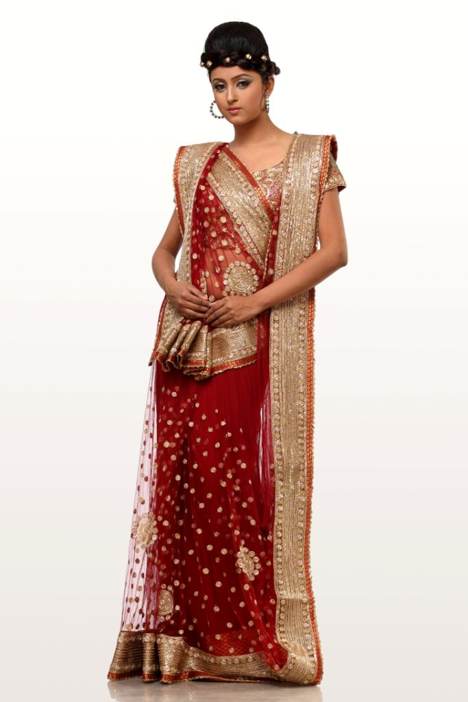 Different Saree Wearing Style (230)