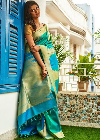 Different Saree Wearing Style (234)