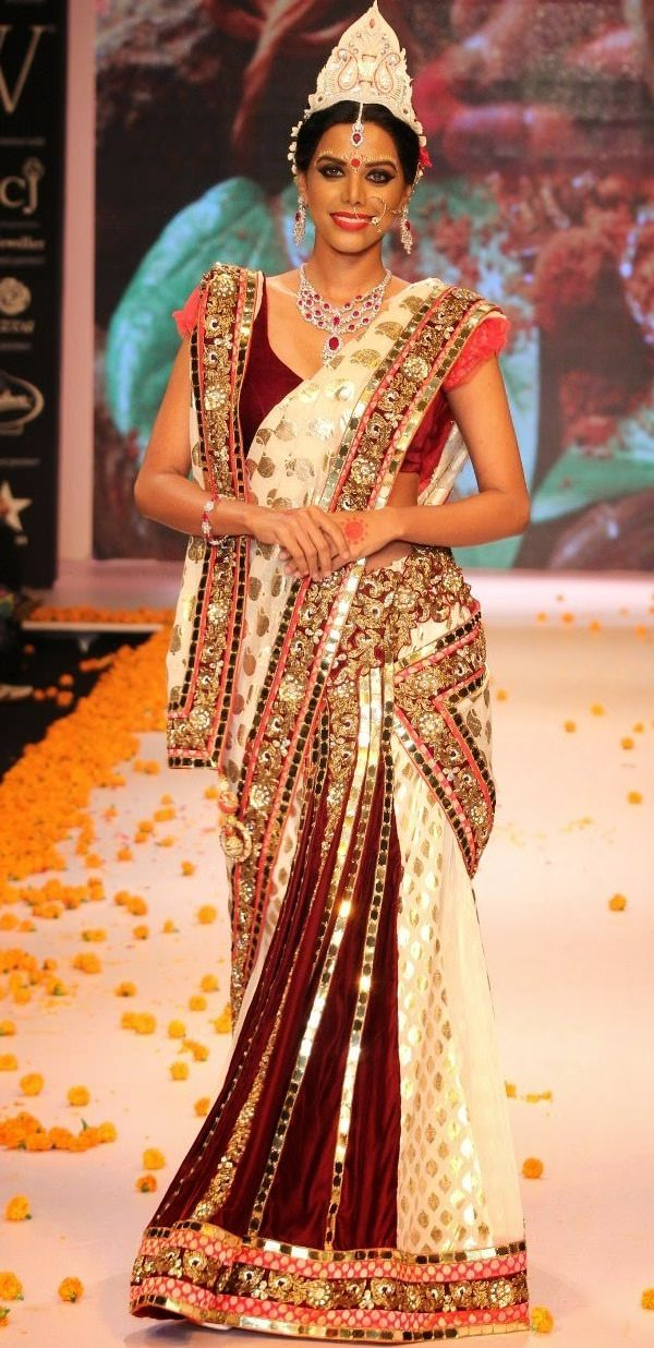 Different Saree Wearing Style (249)