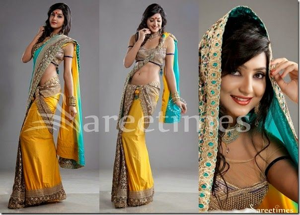 Different Saree Wearing Style (296)