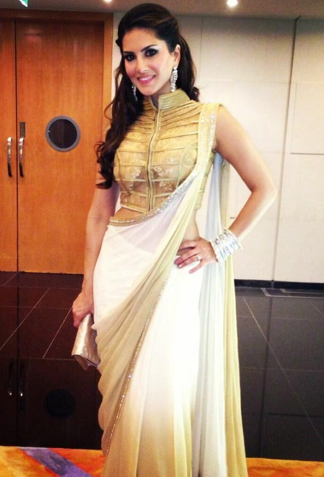 Different Saree Wearing Style (307)