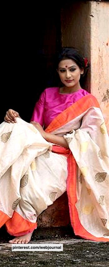 Different Saree Wearing Style (328)