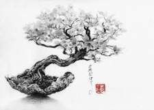 Family Tree Tattoo With Names (148)