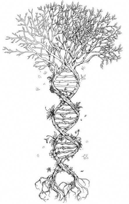 Family Tree Tattoo With Names (179)