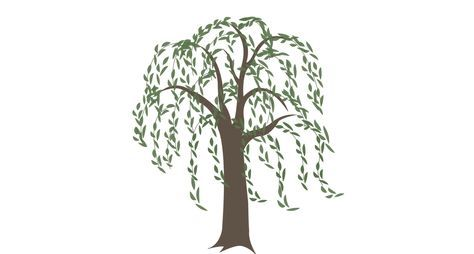 Family Tree Tattoo With Names (249)