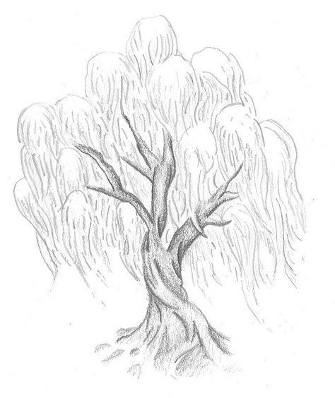 Family Tree Tattoo With Names (29)