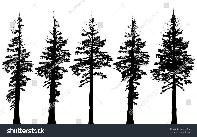 Family Tree Tattoo With Names (46)