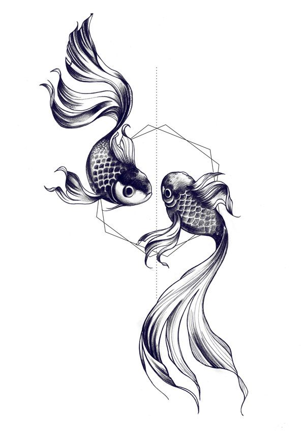 Pisces Horoscope Tattoo Zodiac Sign Fish (125)