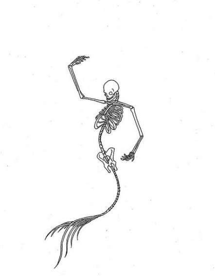 Pisces Horoscope Tattoo Zodiac Sign Fish (154)