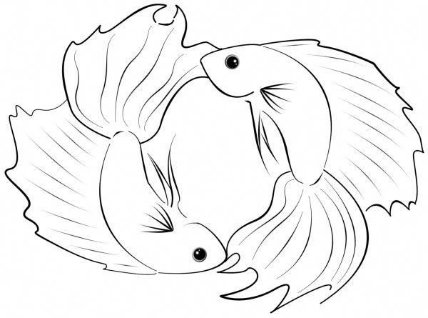 Pisces Horoscope Tattoo Zodiac Sign Fish (215)