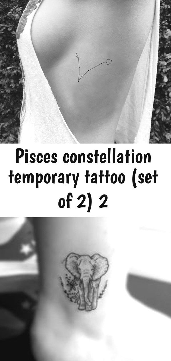 Pisces Horoscope Tattoo Zodiac Sign Fish (96)
