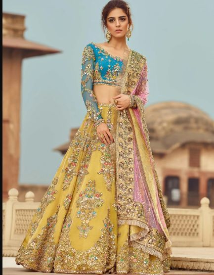 Bollywood Actress Dresses Online Shopping (187)