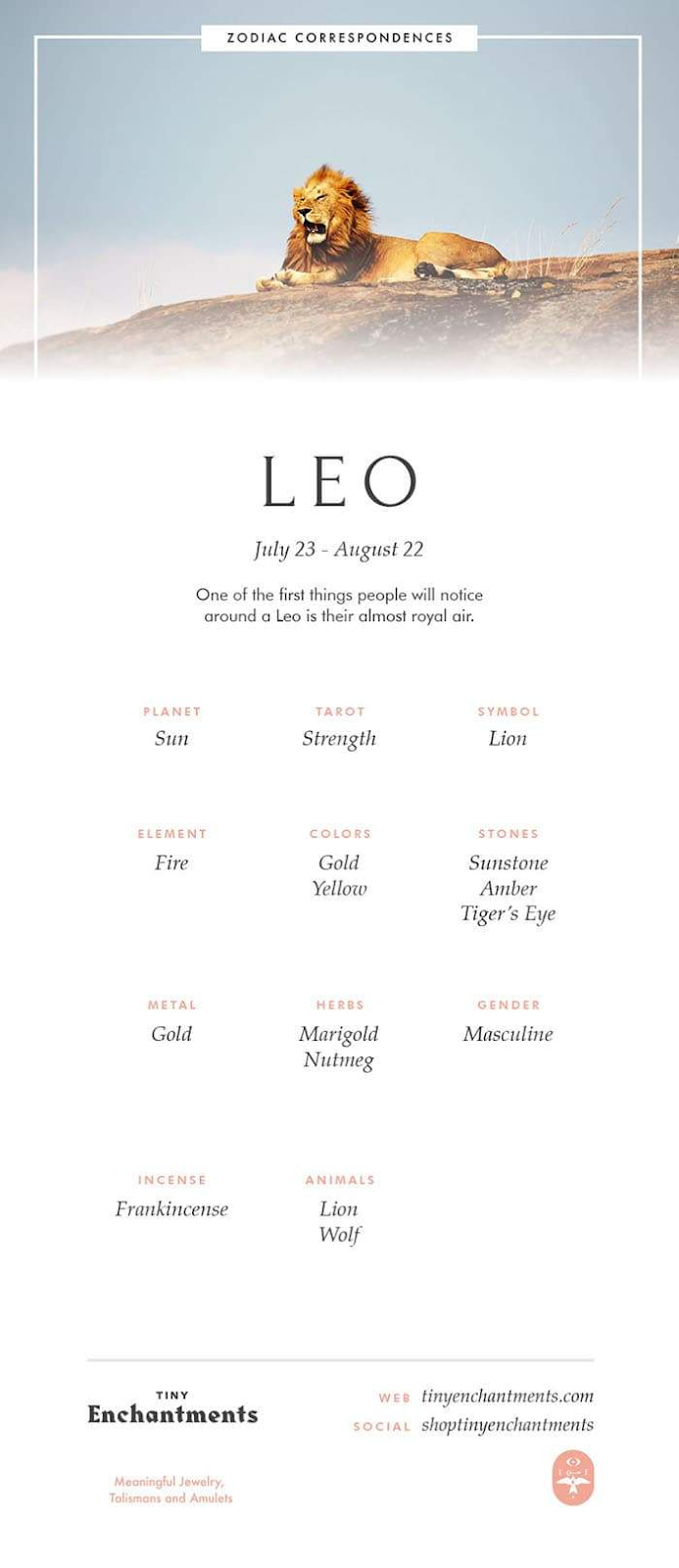 Leo Zodiac Horoscope Sign Symbol Tattoo Designs (11)