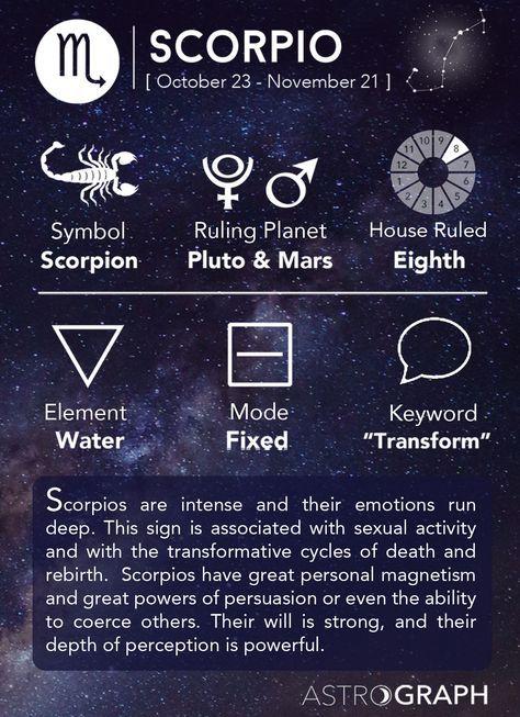 Scorpio Zodiac Horoscope Constellation Sign Symbol Tattoo (152)