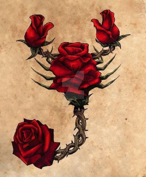 Scorpio Zodiac Horoscope Constellation Sign Symbol Tattoo (215)