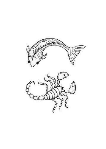 Scorpio Zodiac Horoscope Constellation Sign Symbol Tattoo (226)